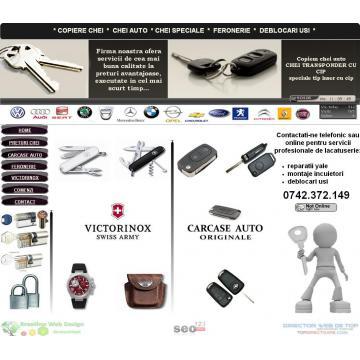 Site-uri web profesionale