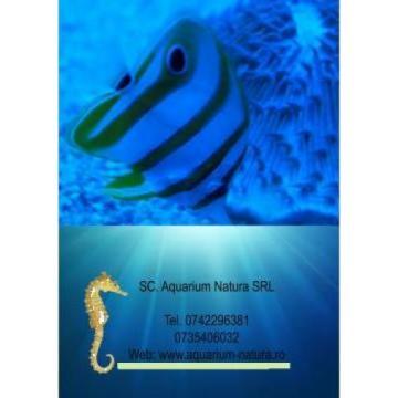 Aquarium Natura Srl