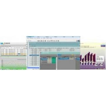 IV Software Consulting Srl