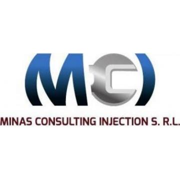 Minas Consulting Injection Srl