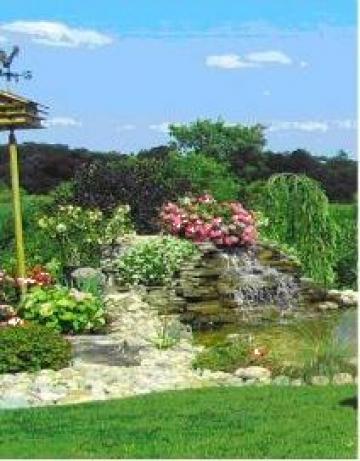 Amenajare gradini de la Houses& Gardens Design& Construct