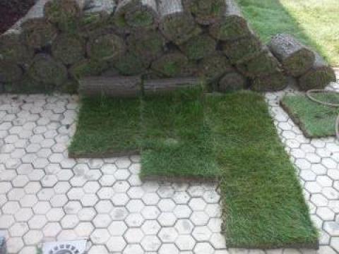 Gazon natural rulou de la Garden Rustic Spatii Verzi