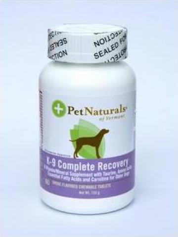 Supliment nutritional pentru caini K-9 Cmplete Recovery