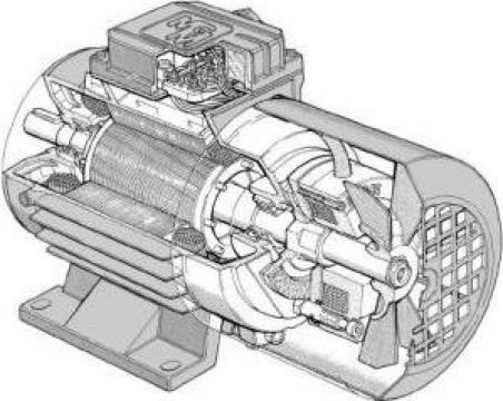 Motor electric asincron