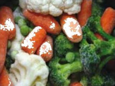 Echipare depozite pentru fructe si legume congelate
