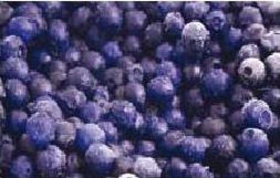 Instalatii industriale de congelare legume - fructe