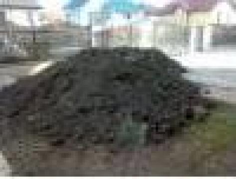 Pamant negru de padure de la Laragarden