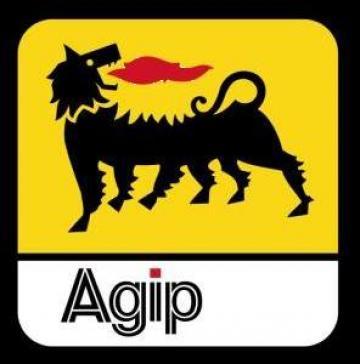 Ulei mineral aditivat anti stick-slip Agip Exidia HG