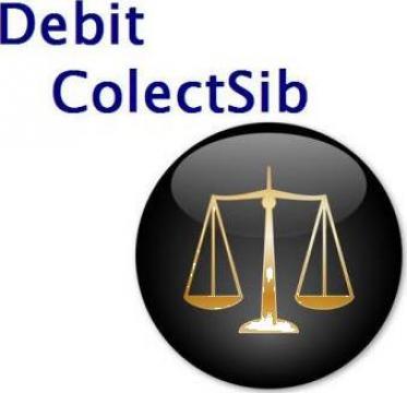 Recuperari creante datorii debite de la Debit Colectsib