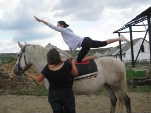 Gimnastica pe cal Voltija