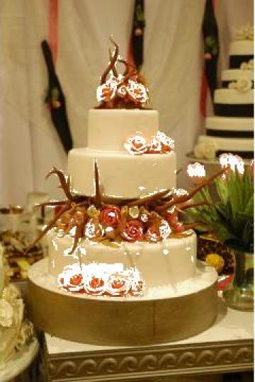 Tort de nunta modern de la Motilor Srl