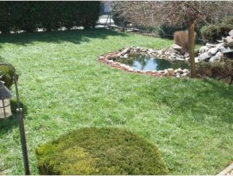 Gazon rulat de la Garden Rustic Spatii Verzi
