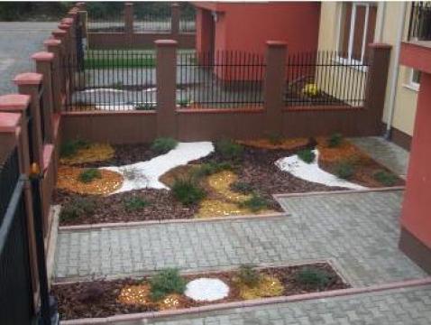 Plante pentru amenajare gradini