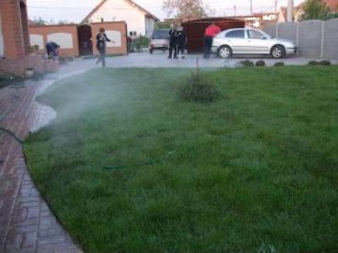 Gazon rulou pentru curti de la Garden Rustic Spatii Verzi