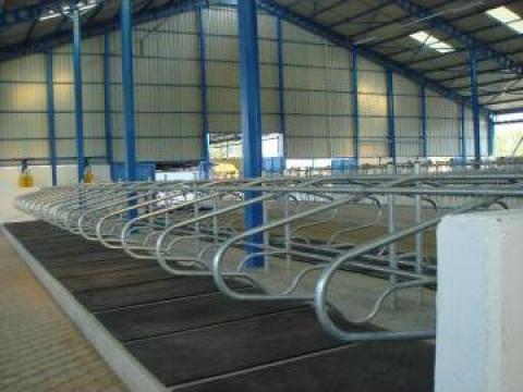 Separatoare cuseta odihna vaci de la APF Trade Srl