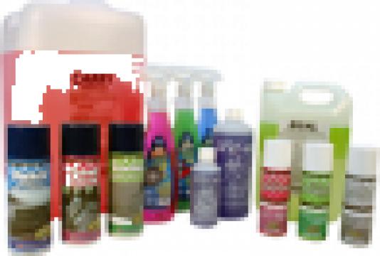 Detergent gel pentru indepartare grafitti de la Tehnic Clean System