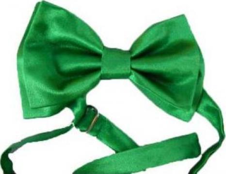 Papion verde lucios de la Johnny Srl.
