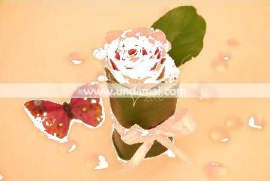 Martisor trandafir de la Unda Mai Srl