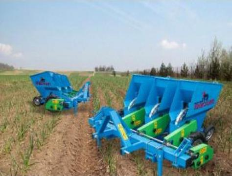 Masina de plantat usturoi 3 sectiuni