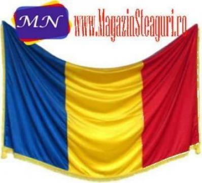 Steag Romania, lance, suport de la MN Profi Serv Srl