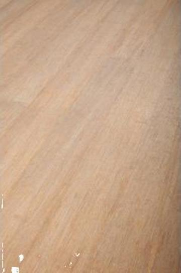 Dusumea finisata bambus Robusto