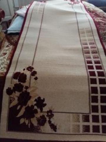 Carpeta Cisnadie 11