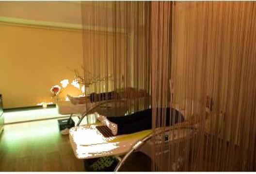 Pat termo-masaj + infrarosu + camp magnetic de la Sc Carla Sante Srl
