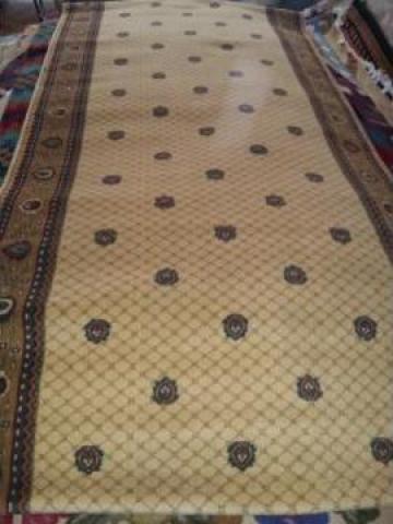 Carpeta Cisnadie 12