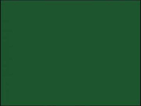 Autocolant d-c-fix Uni mat Verde Inchis 45cmx2m - 346-0003 de la Davo Pro Company Srl