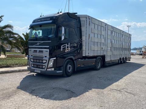 Transport intern si international de animale vii de la Jinarul Srl