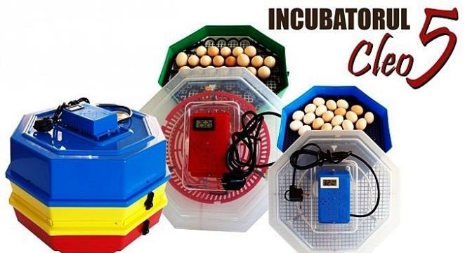 Incubator de oua electric Cleo 5 de la On Price Market Srl