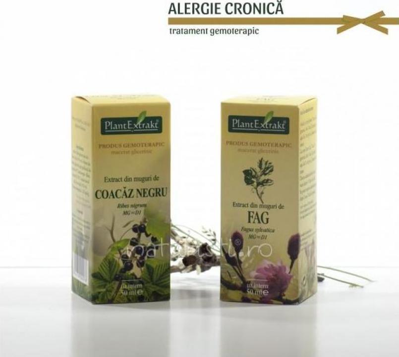 Tratament naturist Alergie cronica